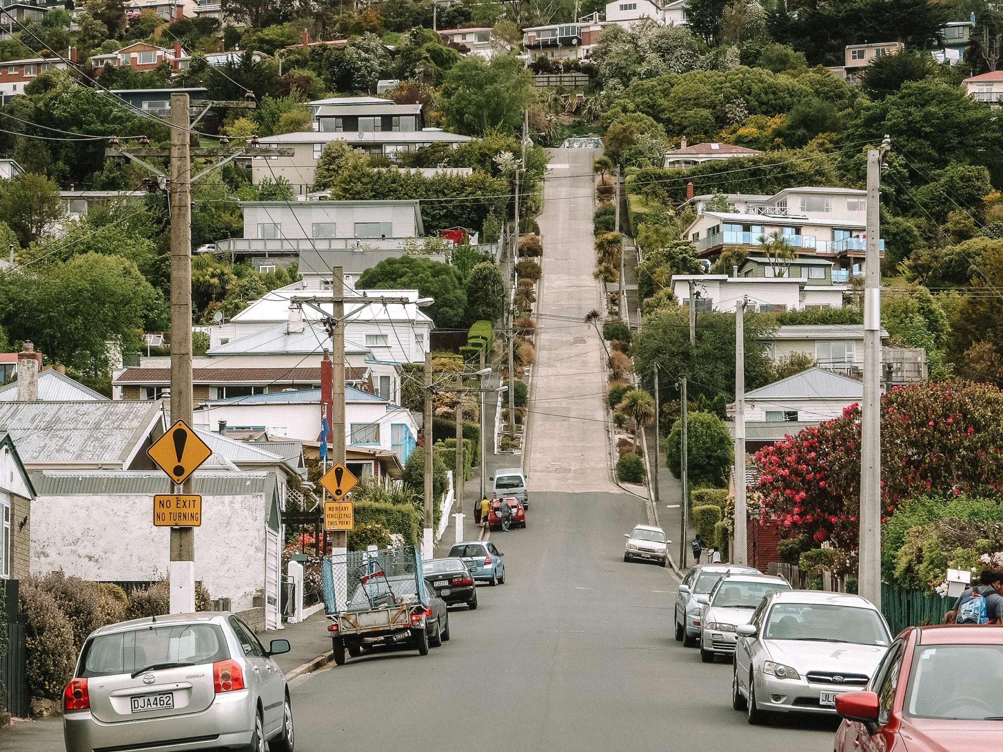Baldwin Street in Dunedin - the world's steepest street (for now!), New  Zealand - CK Travels