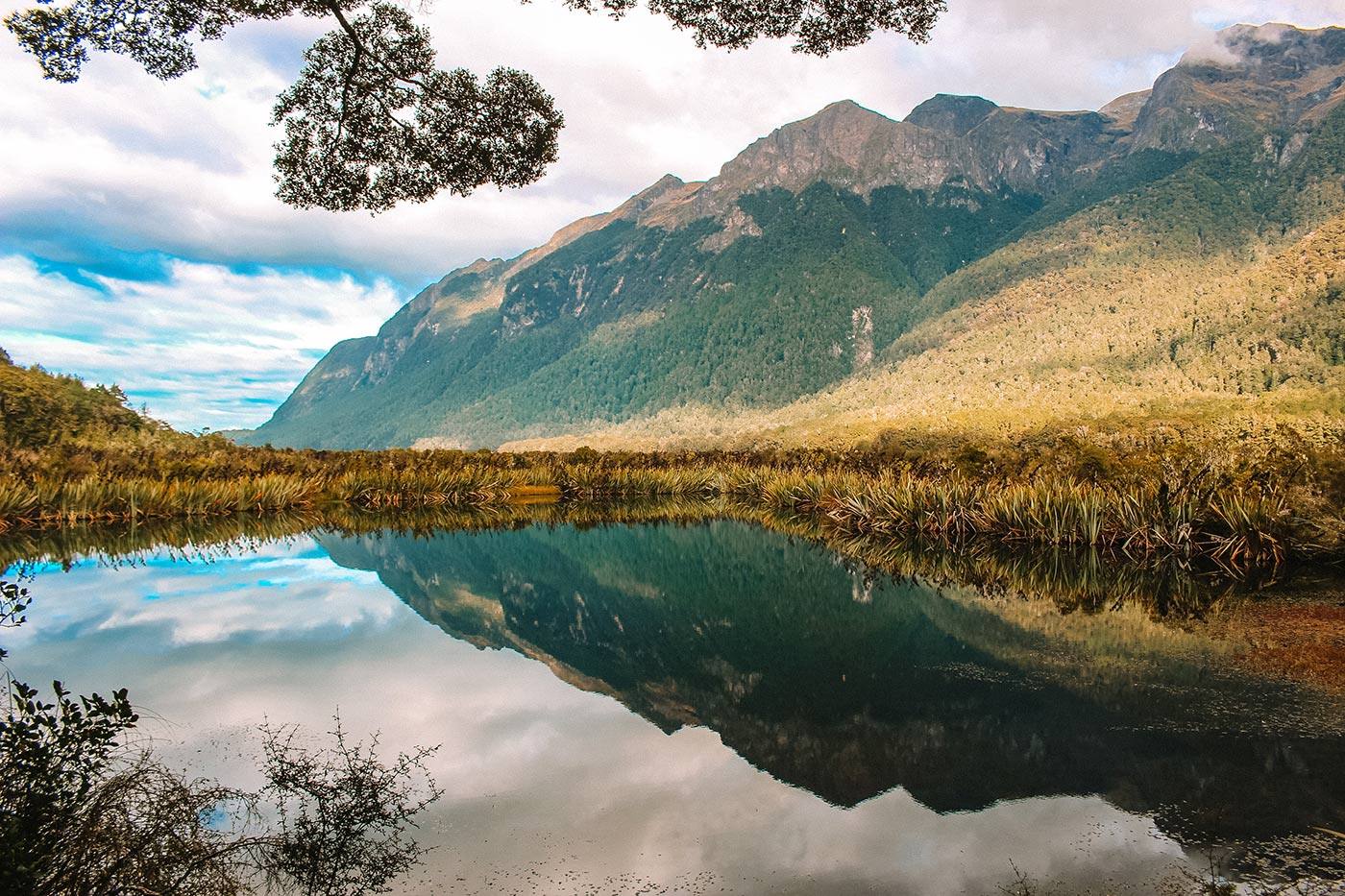 A day trip to Milford Sound, New Zealand blog post mirror lakes