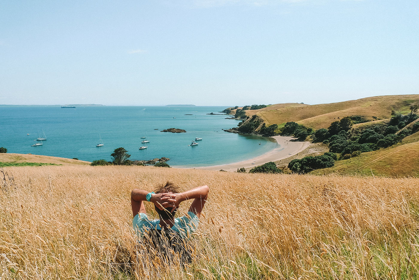 10 awesome day trips from Auckland, New Zealand blog post | Motutapu island