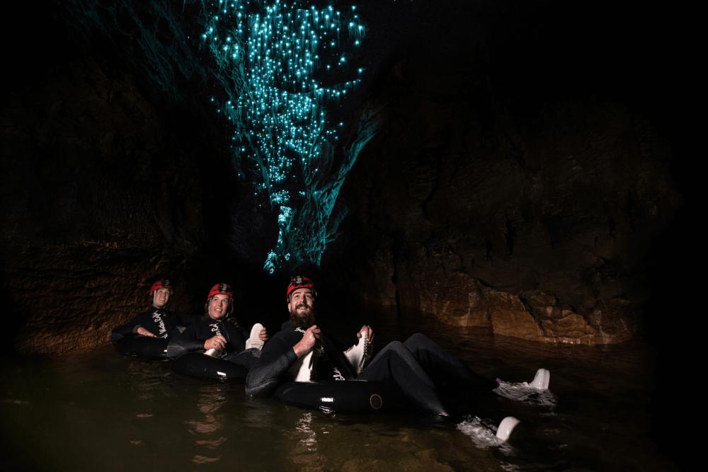 Auckland to Rotorua drive - Waitomo Caves