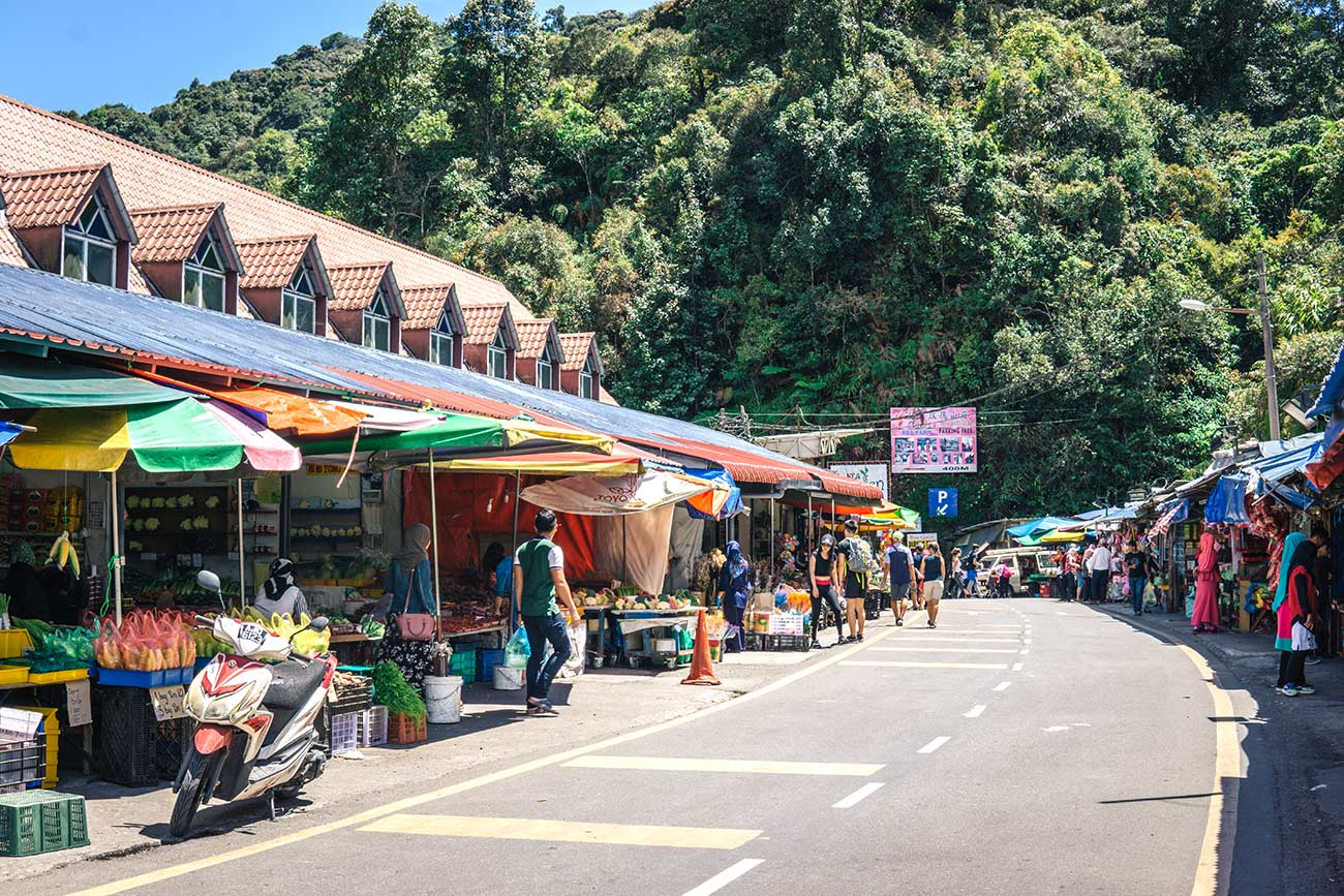 Things to do in the Cameron Highlands: the ultimate guide